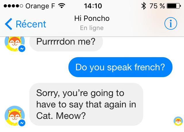 hi poncho